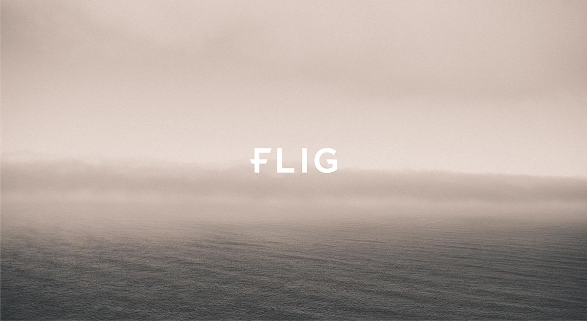 デザイン制作実績/FLIGロゴ